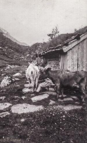 1930ca