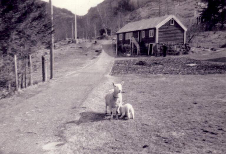 1960ca-003